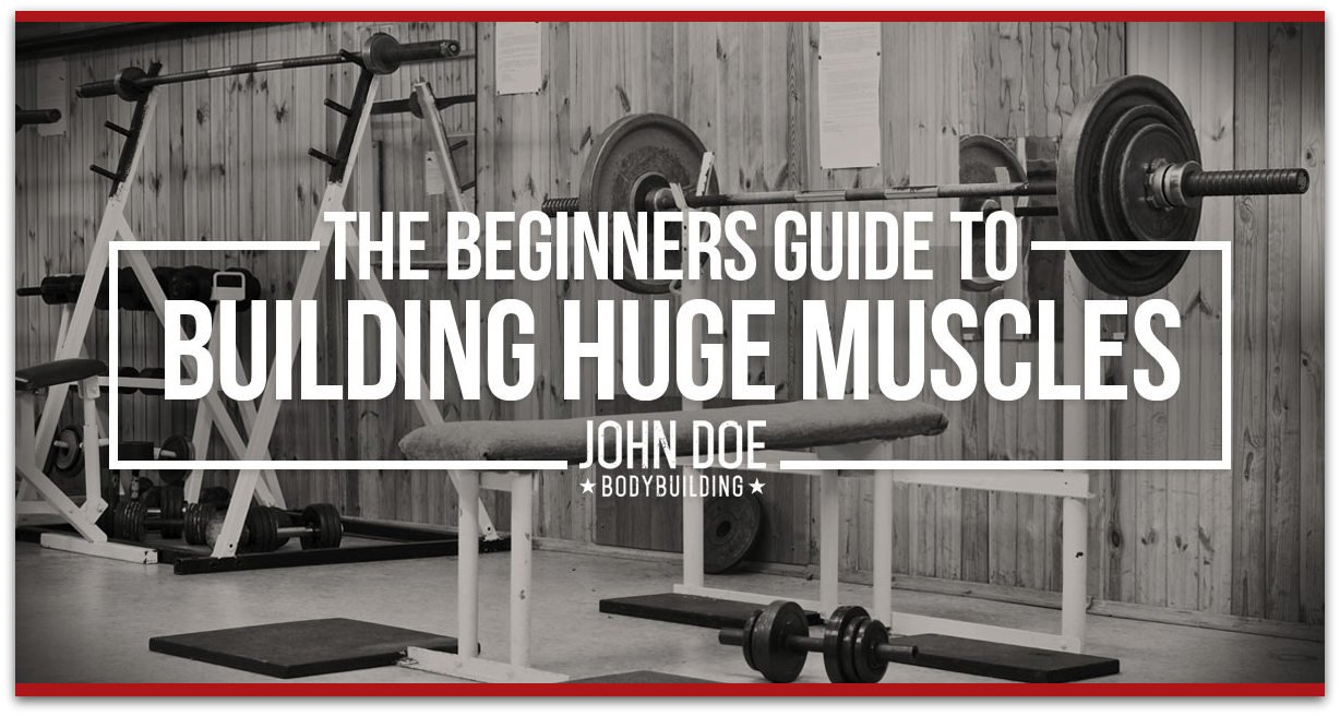 beginners-guide-to-building-huge-muscles