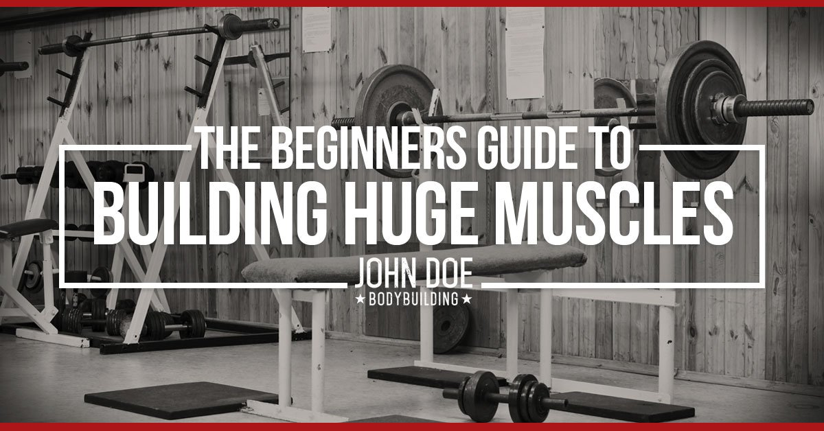 Beginner's Guide to building huge muscles