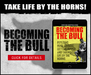 Becoming The Bull ebook